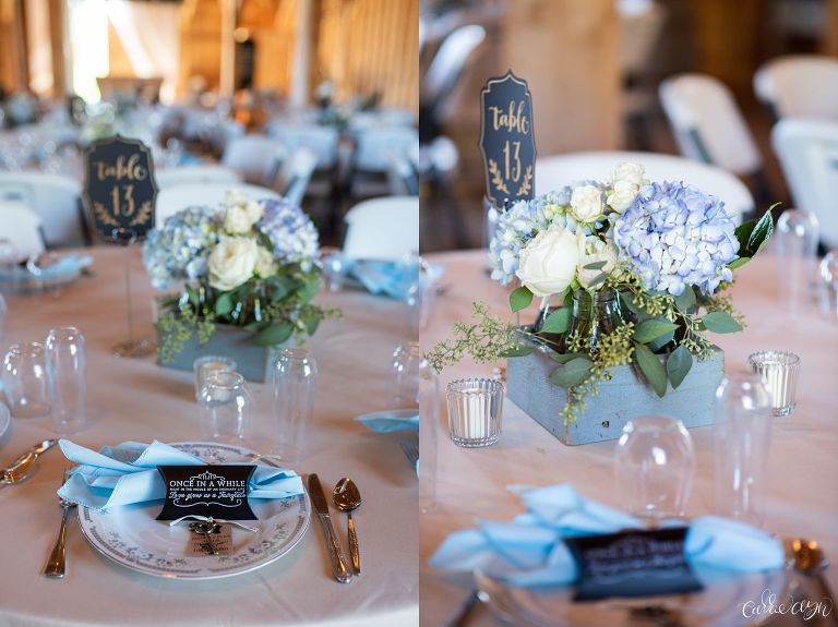 Disney Inspired Wedding at Amador Cellars